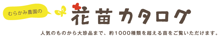 花苗カタログ